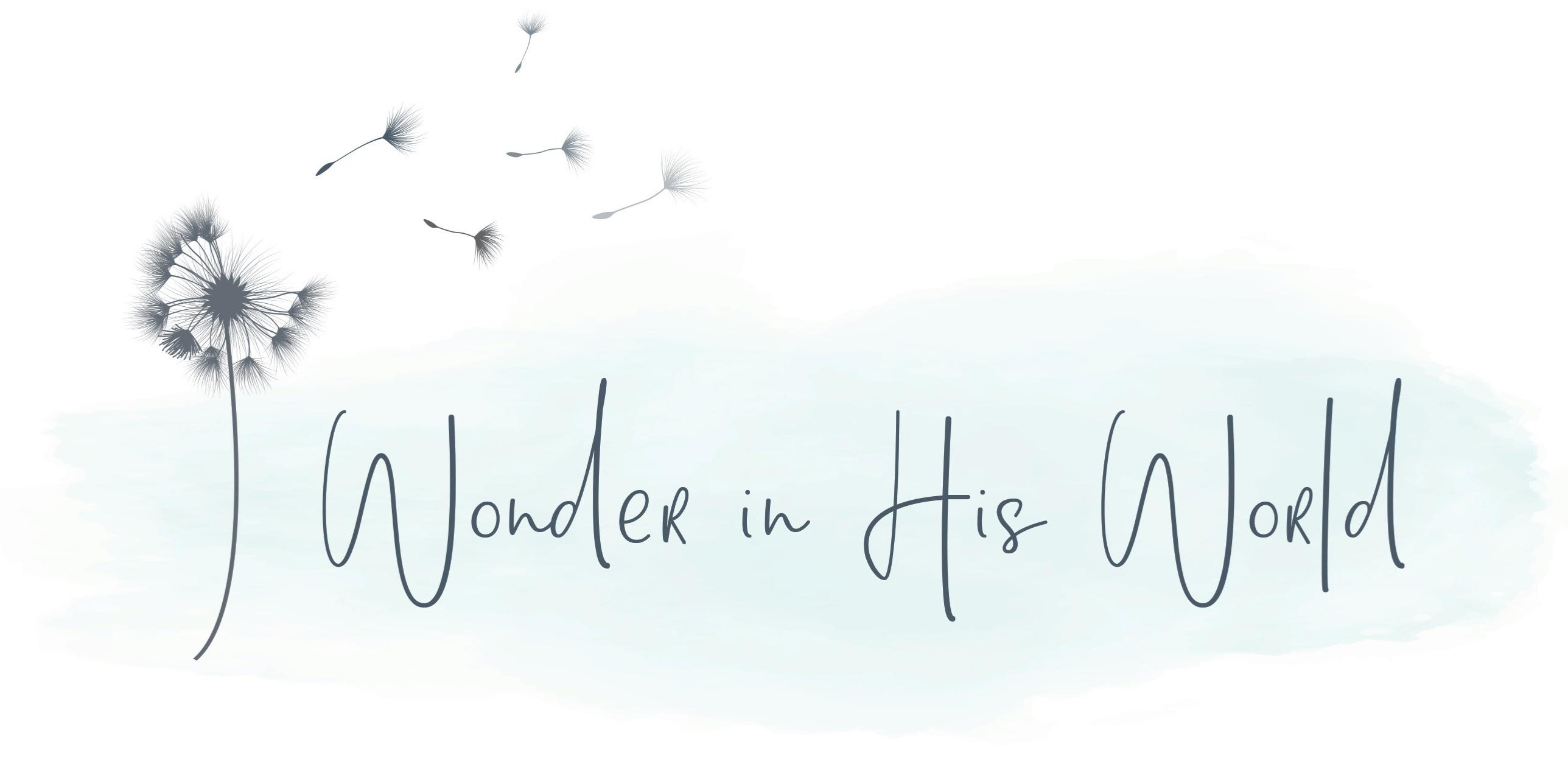 Wonder in His World